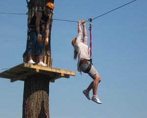 Cat de profitabila este escalada in copaci? Povestea parcurilor de tip aventura din Romania
