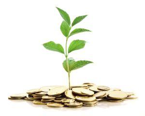 Subventii pe suprafata: plata integrala va incepe in luna martie