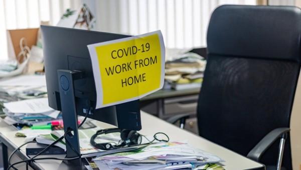 BAROMETRU. Munca de acasa. Angajatii au devenit mai productivi