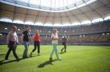 Gazonul de pe Arena Nationala, schimbat pentru a 10-a oara. Firea a alocat 240.000 de euro