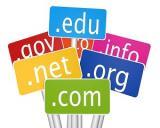 Istorii cu miros de bani: cele mai scumpe domenii de internet