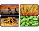2014, un an bun pentru investitorii in marfuri