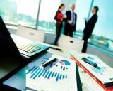 Politica a bulversat mediul de afaceri. Un nou studiu arata cum sunt afectate companiile