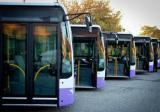 Tataru atrage atentia asupra pericolului din mijloacele de transport in comun