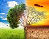 Savantii au gasit o idee controversata pentru a opri schimbarea climatica. Ce efecte secundare poate avea