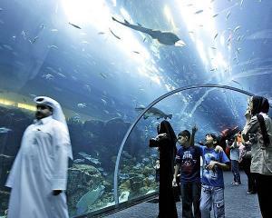 Cel mai vizitat loc din lume este ... un mall din Dubai