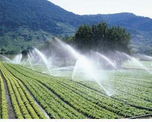 Cat a folosit Romania din bugetul de 550 de milioane de euro pentru irigatii, inundatii si drumuri de acces la culturile agricole