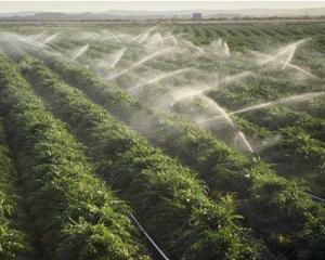Fermierii pot plati apa de la irigatii fara pierderile din sistem