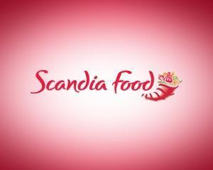 Scandia Food si-a deschis restaurant cu servire rapida in Baneasa Shopping City
