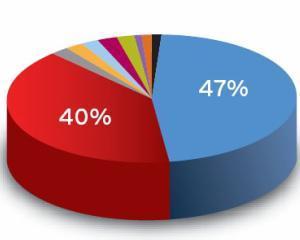 Comisia Nationala de Prognoza: In 2013 vom avea un curs valutar mediu de 4,5 lei/euro