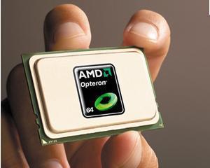 AMD concediaza 10% dintre angajati
