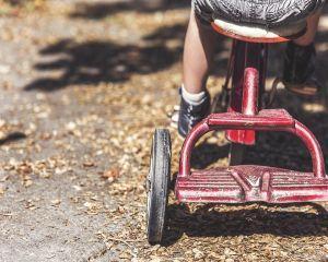 Presedentia anunta masuri cu privire la situatia minorilor cu parinti plecati in strainatate