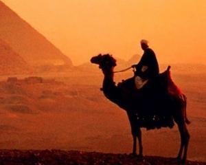 Discutii dure intre FMI si Egipt, pe marginea acordarii unui imprumut de 4,8 miliarde dolari