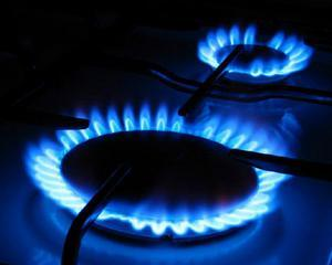 Scumpirea gazelor trebuia facuta de guvernele anterioare
