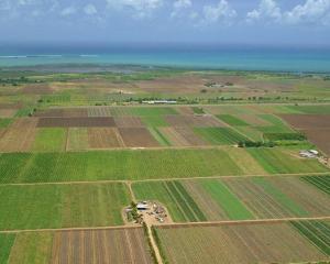 Qatarul vrea sa investeasca in agricultura romaneasca