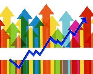 Principala nemultumire a consumatorilor online vizeaza dificultatile de incarcare a site-urilor