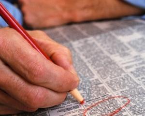 ANOFM: Stadiul realizarii Programului de ocupare a fortei de munca al ANOFM, pe primul semestru al anului 2011