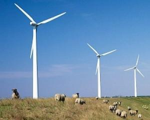 Fermele eoliene ridica temperatura in zonele in care sunt instalate