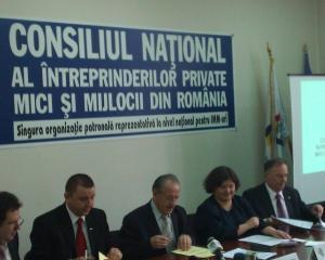 Ovidiu Nicolescu, CNIPMMR: Peste 100.000 de IMM-uri au disparut in Romania din cauza crizei si recesiunii