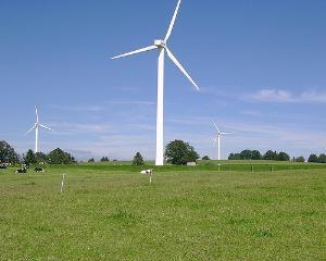 Din dragoste pentru natura: un nou parc eolian in Romania