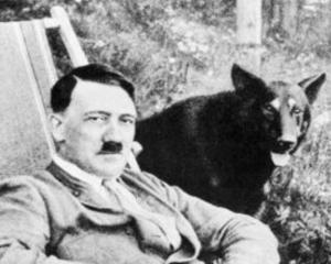 Wooffan SS: Experimentul pe care Hitler l-a tinut secret