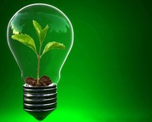 7 principii despre investitii pentru antreprenori
