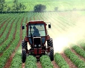 Ministrul Agriculturii solicita sprijinul investitorilor chinezi pentru refacerea sistemului de irigatii din Romania