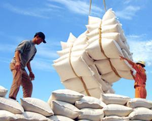 Economia romaneasca ar trebui sa-si bazeze cresterea pe exporturi, nu pe consum