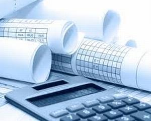 Consiliul Fiscal: Este regretabila practica de a eluda printr-un act normativ regulile instituite prin legea 69/2010