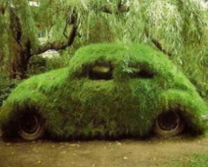 Se poarta culorile eco in cazul vopselei auto