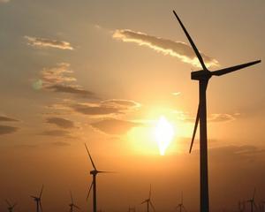 Ernst & Young: 75% din marile corporatii vor sa investeasca in energia verde