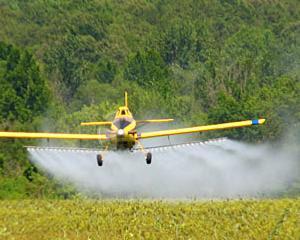 Chimistii din intreaga lume avertizeaza ca ne paste o criza alimentara, cauzata de lipsa ingrasamintelor bazate pe fosfor
