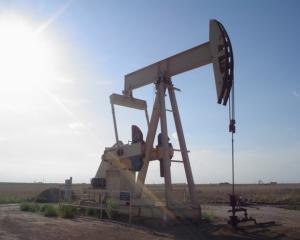 Nigeria a semnat un contract de 4,5 miliarde de dolari cu compania petroliera Vulcan Petroleum