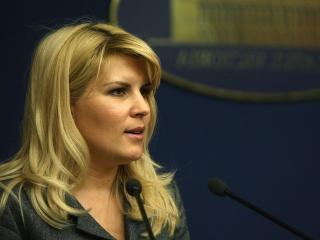 Ministerul lui Udrea va cheltui 320 de milioane de euro pe 30 de sali polivalente