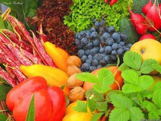 Dieta vegetariana. Avantaje si riscuri pentru sanatate. Partea 2