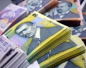 Mariana Campeanu: Saptamana viitoare se vor relua platile prin programul POSDRU