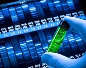 GlaxoSmithKline va face o oferta ostila de preluare a Human Genome Sciences
