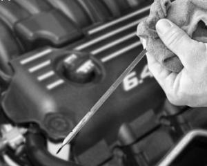 Coface: Companiile romanesti au dificultati din cauza lipsei lichiditatilor din piata