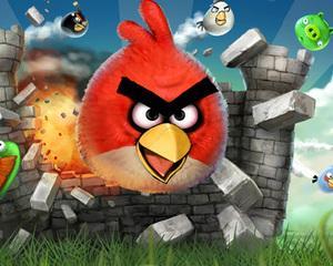 Un stol de Angry Birds contrafacute a aterizat la Constanta
