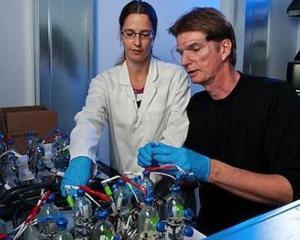 5 metode prin care cercetatorii folosesc microbii pentru a crea energie