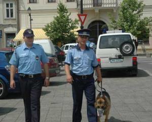 Deficit: Romania se afla pe locul 18 in UE la numarul de politisti pe mia de locuitori