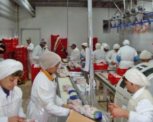 Carnea de pasare se vinde bine la export. Agricola Bacau a inregistrat o crestere a livrarilor externe