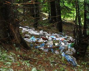 Studiu WWF: 81% din romani considera poluarea o problema grava de mediu in Romania, iar 60% indica defrisarile