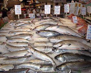 Pescarii vor avea bursa de peste la Tulcea, la jumatatea anului viitor