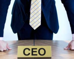 Companiile de stat cauta manageri privati