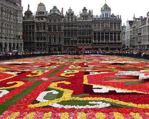 Carti si filme romanesti direct la Bruxelles