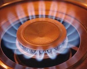 Importurile de gaze s-au diminuat cu 28,7% in primul semestru