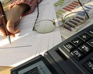 Microintreprinderile, singurul sector din economie cu capitalizare negativa