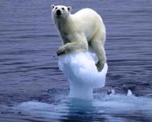 8 din 10 companii sunt ingrijorate de schimbarile climatice globale