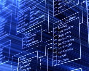 Achizitii si logistica: Cat de mare trebuie sa fie baza de date cu furnizori?
